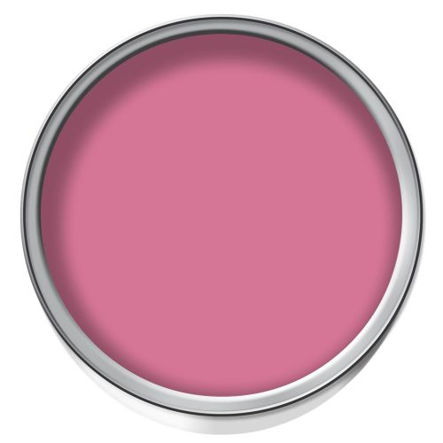 Pink Temporary Paint